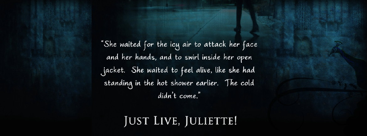 Just Live Juliette - She waited for the icy air to attack her face and her hands, and to swirl inside her open jacket. She waited to feel alive, like she had standing in the hot shower earlier. The cold didn't come.